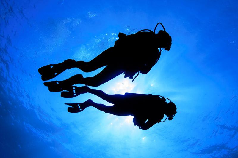 diving-palau